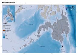Mindanao Non Vegetated Areas