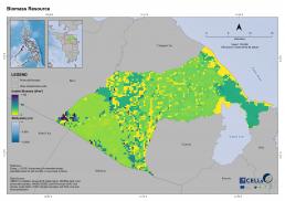 Naujan Biomass Resource
